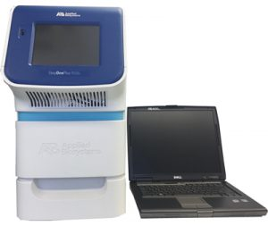 stepone realtime PCR